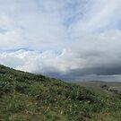 Cloudscape Over Ugborough Beacon by lezvee