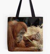 Orangutan Kamil at Melbourne Zoo Tote Bag