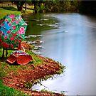 Reynolds Creek by Kym Howard