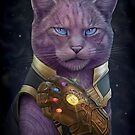 Thanmeows and the Infinity Paw by Jenny Parks