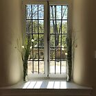 Flowers and a Window by Jacyncas