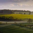 Devon misty morning by Neil Buchan-Grant