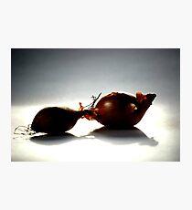 Shallots Photographic Print