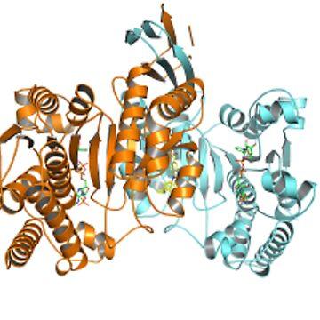 #Enzyme #Informatics, #EnzymeInformatics, particle #chemistry medicine biology science biochemistry shape chemical by znamenski