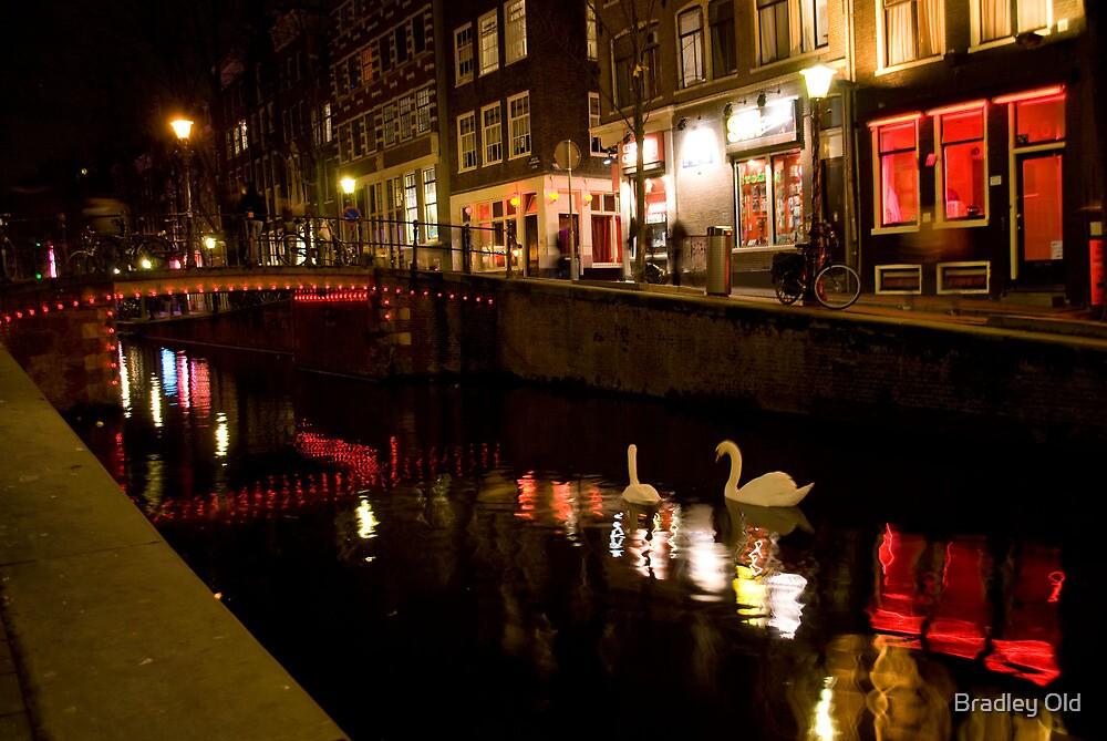 Red Light Swans by Bradley Old