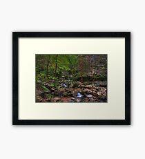 Blanchard Springs Little Stream Framed Print