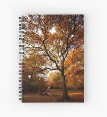 The beauty of Burnham Beeches Spiral Notebook