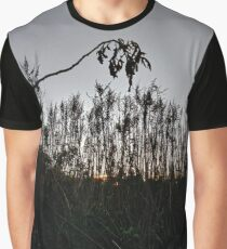 #plant #leaf #morning #grass #landscape #tree #sky #nature #outdoors #wood #environment #weather #vertical #branch #plantpart #nopeople #sunrise #dawn #light #naturalphenomenon #nonurbanscene #day Graphic T-Shirt