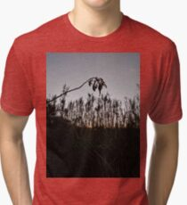 #plant #leaf #morning #grass #landscape #tree #sky #nature #outdoors #wood #environment #weather #vertical #branch #plantpart #nopeople #sunrise #dawn #light #naturalphenomenon #nonurbanscene #day Tri-blend T-Shirt