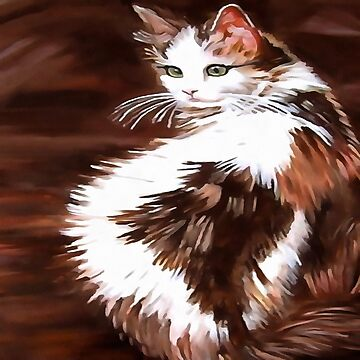 Elegant Long Haired Bi-Colored Cat by taiche