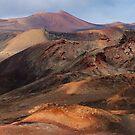 Timanfaya National Park by Neil Buchan-Grant