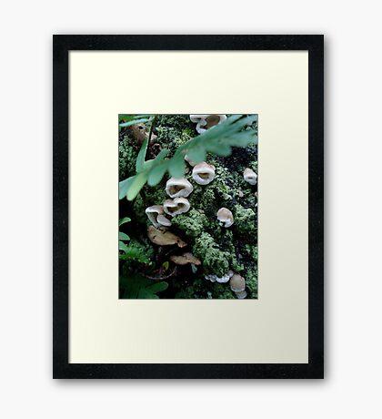 All together now - Sing Framed Print