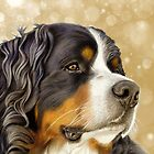 Bernese Mountain Dog - Old Gold by bydonna