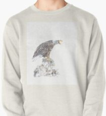 Bald eagle in snowstorm Pullover