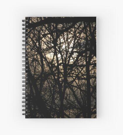winter trees Spiral Notebook