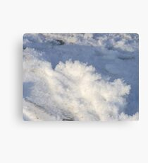 White Christams Canvas Print