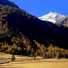 Autumnal trip by annalisa bianchetti