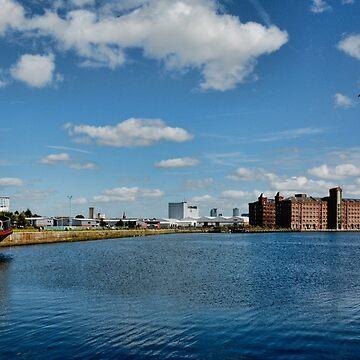 Birkenhead Docks, Great Float by Retiree