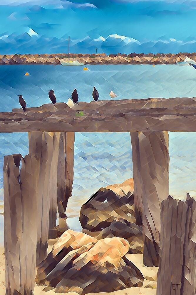 Birds on a Jetty by Elaine Teague