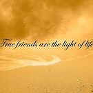 True Friends Are The Light Of Life by hurmerinta