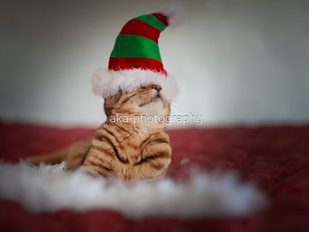 Santa's little helper! by aka-photography