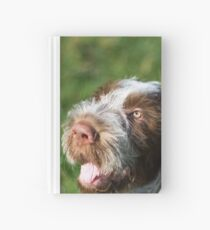 Spinone Puppy Smile - Brown Roan Italian Spinone Puppy Dog Head Shot Hardcover Journal