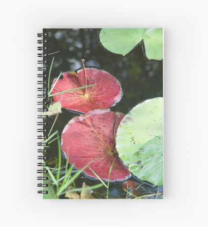 Waterlily Parasols Spiral Notebook