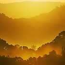 Glory Morning by Steven  Siow