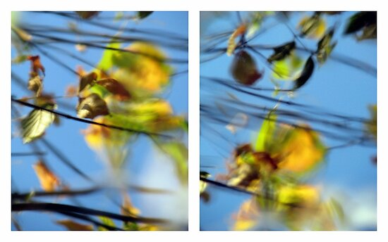 Another Day Goes By - Diptych by Kitsmumma