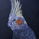 Cockatiel on Black Background by lisavonbiela