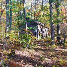 Old Cabin On The Mountain by James Brotherton
