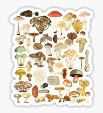 Pegatina Mushroom Lover Botanical Fungi Plants Morel Psychedelic Mushroom Forager Mushroom Gift