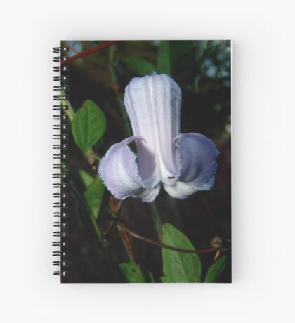 Pine Hyacinth  (Clematis baldwinii ) Spiral Notebook