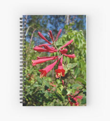Trumpet Honeysuckle (Lonicera sempervirens) Spiral Notebook