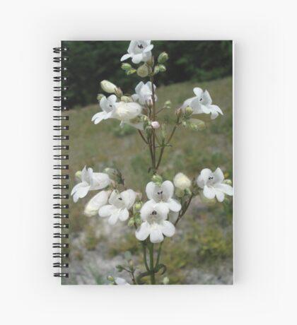 Foxglove Beard-Tongue (Foxglove Penstemon) Spiral Notebook