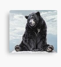 Lions & Tigers & Bears, Oh My! Canvas Print