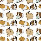 Guinea Pigs pattern by EllenorMererid