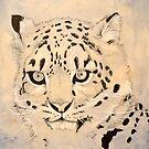 Snow Leopard cub by Amanda  Shelton