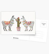 llamas Postcards