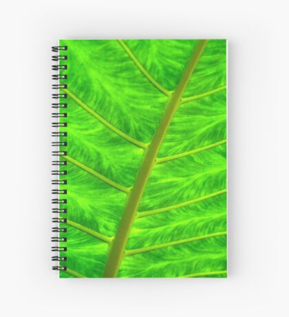 'under belly' Spiral Notebook