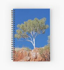 Ghost Gum, Ord River, Kununurra, Western Australia Spiral Notebook