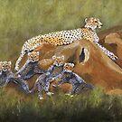Cheetahs by jfrier