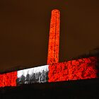 Liberty Memorial Poppies by Catherine Sherman