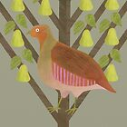 Partridge in a Pear Tree by HeliconHill