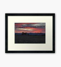 Cows - Sunset Framed Print