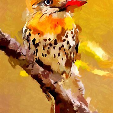 Spot-backed Puffbird by ChrisButler