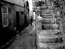 Stone Steps by Mojca Savicki