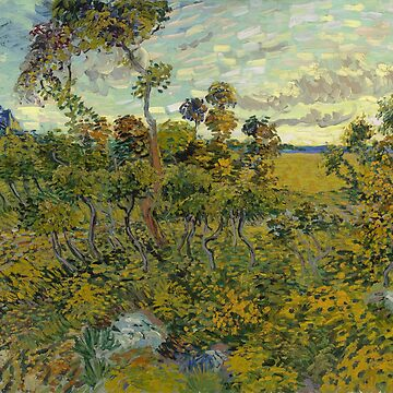 Vincent Van Gogh - Sunset At Montmajour by manbird