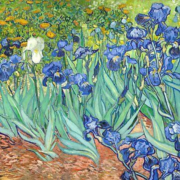 Vincent van Gogh - Irises by manbird