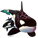 Orcas Only by Kyra C. Kalageorgi